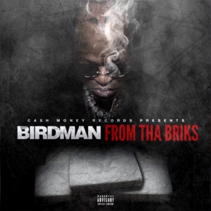 Cash Money Records Presents: From Tha Briks