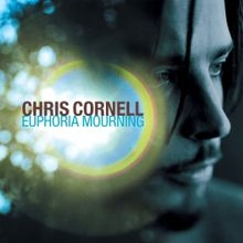 Chris Cornell Can't Change Me