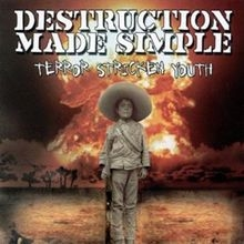 Destruction Made Simple The End